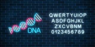 Dna-följden undertecknar i neonstil med alfabet Glödande symbol för DNAmolekylstruktur vektor illustrationer