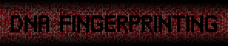DNA Fingerprinting text on DNA genetic code background illustration. DNA Fingerprinting text on abstract shades of red DNA genetic code background illustration Royalty Free Stock Photography