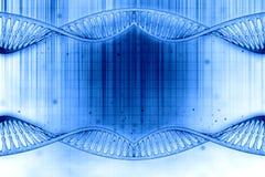 DNA frame. 3D illustration of a DNA frame in beautiful blue background Royalty Free Illustration