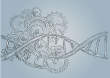 DNA and gears. Abstract sketch. 10 EPS Royalty Free Stock Images