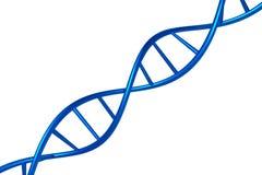DNA-geeft de kettings blauwe die kleur op een witte 3D achtergrond wordt geïsoleerd, voorwerp terug Stock Afbeelding