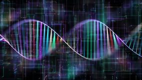 DNA Genetic code colorful stock video footage