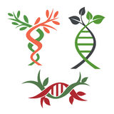 DNA 3. DNA, genetic sign, elements and icons collection Stock Image