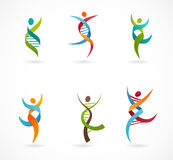 DNA, genetic symbol - people, man and woman icon vector illustration
