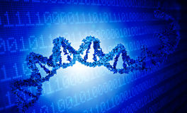 DNA genetics data concept Stock Photos