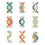 DNA, genetics vector icons Stock Photos