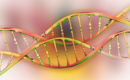 DNA genome research. DNA molecule structure royalty free illustration