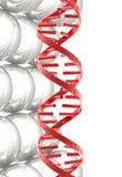 dna glansowany czerwony sfer struktury biel Obraz Royalty Free