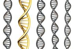 DNA-Gold hervorragend von Silber DNA, lokalisiert auf weißem Hintergrund, 3d übertragen Stockfotografie