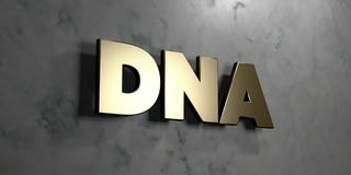 Dna - Gold sign mounted on glossy marble wall  - 3D rendered royalty free stock illustration Royalty Free Stock Photos