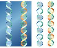 DNA graph. Vector DNA graph in different colors Royalty Free Stock Photo