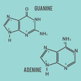 DNA guanine and adenine. Vector in eps 8 easy to edit Royalty Free Stock Image