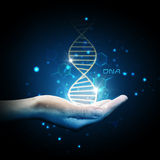 Dna on hand. Dna shape is modelled and rendered royalty free stock photography