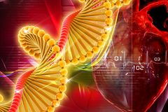 Dna with heart. In digital design Stock Photos