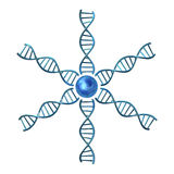 Dna helices Stock Photo