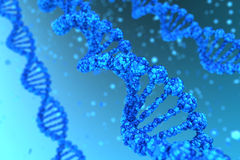 DNA helix. Three DNA helix magnified - high quality render royalty free stock photography