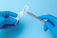 DNA helix badanie Pojęcie genetyczni eksperymenty na ludzkim biologicznym kodu DNA Naukowiec trzyma DNA skalpel i helix obrazy stock