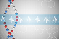 DNA helix in blue and red with ECG line Royalty Free Stock Images
