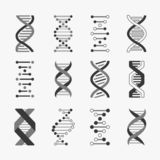 Dna. Helix cell gene structure bioinformatics spiral chromosomes research biology genetic engineering, vector technology stock illustration