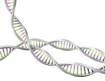 DNA helix 3d shape, science, biotechnology concept illustration. Stock Photography