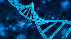 DNA helix. Double helix of the DNA in blue background Stock Photos