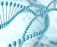 DNA Helix. Dna double helix molecules and chromosomes stock images