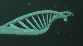 DNA Helix Evolution stock video footage