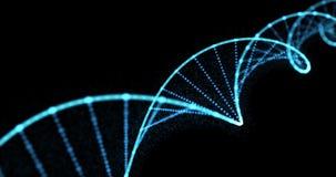 DNA helix, gene molecule and genetic chromosome cell, 3D spiral loop. Human DNA molecule blue light on black background