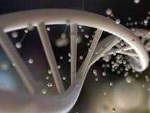 DNA helix i cząsteczkowa struktura - 3D rendering Fotografia Stock