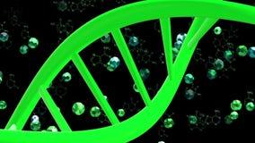 DNA-Helix im Grün auf Schwarzem stock video footage