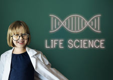 DNA Helix Life Science Graphic Concept stock images