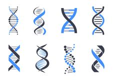 DNA Helix Patterns Colorful Vector Illustration royalty free illustration