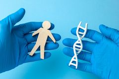 DNA helix research. Concept of genetic experiments on human biological code. The scientist is holding DNA helix and human figure stock photos