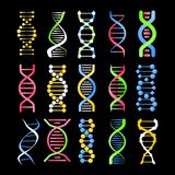 DNA helix symbol of spiral human gene cell vector color icons set. DNA helix symbols set of spiral human gene cell or molecule. Vector color icons set for Royalty Free Stock Photo