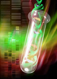 Dna helix in test tube Royalty Free Stock Photography