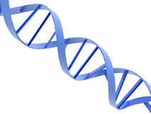 Dna helixes Royalty Free Stock Photography