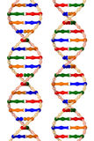 DNA helixes (isolated on a white background) Royalty Free Stock Images