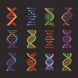 DNA icons. Biochemistry researching laboratory double helix symbols, gene model pictograms. Genetic code molecule vector stock illustration
