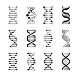 DNA icons. Genetic structure code, DNA molecule models isolated on white background. Genetic vector symbols stock illustration