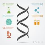 DNA Infographic illustrazione vettoriale