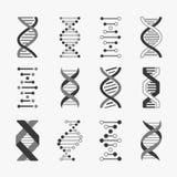 DNA Ingegneria genetica dei cromosomi di bioinformatica della struttura del gene delle cellule dell'elica di biologia a spirale d illustrazione di stock
