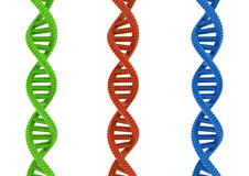 DNA. DNA isolated on a white background vector illustration