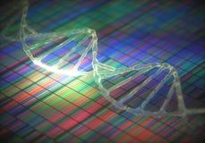 DNA kodieren Reihenfolge Stockfotografie