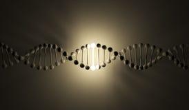 DNA luminosa. ilustración 3d, en fondo negro Foto de archivo libre de regalías