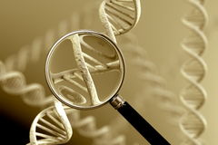 DNA Magnification Royalty Free Stock Photo
