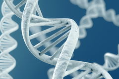DNA Magnification Royalty Free Stock Photos
