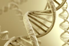 DNA Magnification Royalty Free Stock Photography