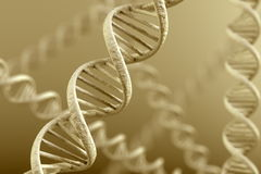 DNA Magnification Stock Images