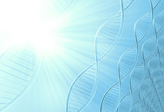 A dna in medical colour Stock Photography