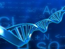 Dna model Royalty Free Stock Photos